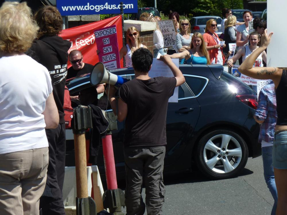 Around 45 protesters attend Dogs4us protest, massive public support! (4/4)