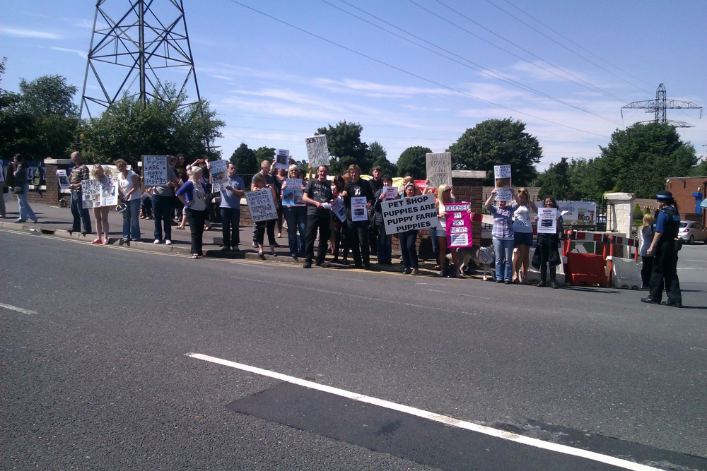 Around 45 protesters attend Dogs4us protest, massive public support! (1/4)