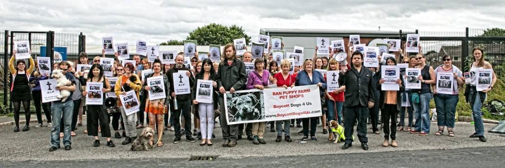 Boycott Dogs4Us