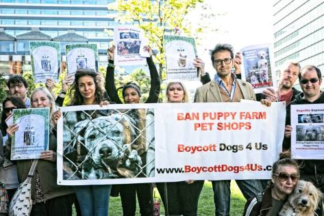 boycott-dogs4us-puppy-farm-awareness-day