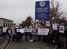 salford-town-centre-boycott-dogs4us-2