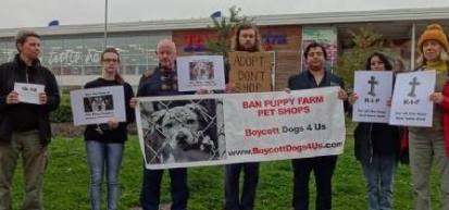 salford-town-centre-boycott-dogs4us